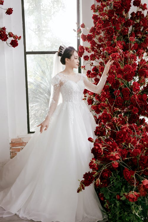 Full body of young Asian female in elegant white dress standing near bright red bright flowers