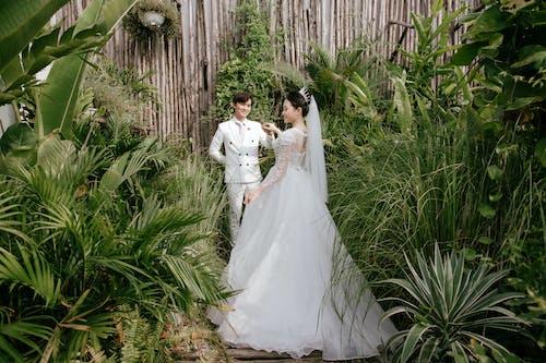 คลังภาพถ่ายฟรี ของ การแต่งงาน, ความรัก, ความใกล้ชิด