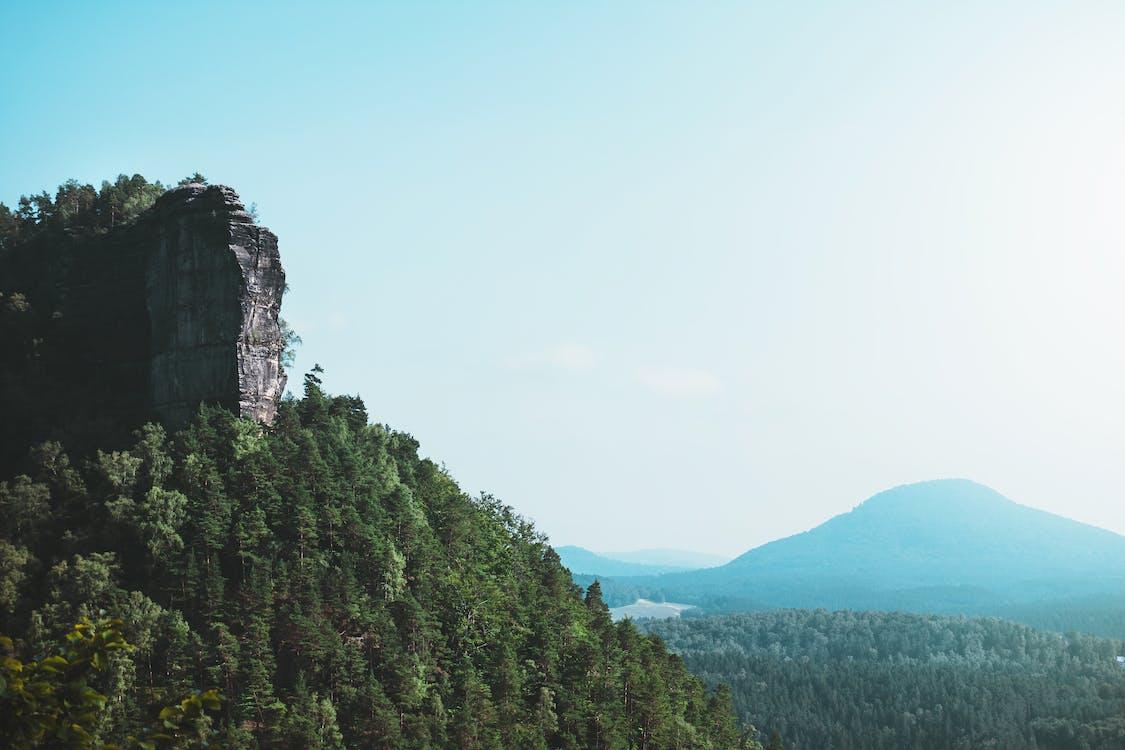 hora, idylický, les