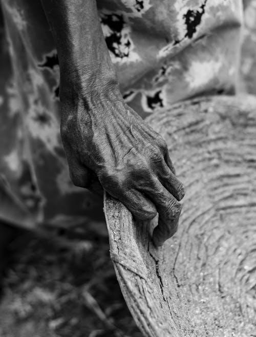Бесплатное стоковое фото с голый, дерево, женщина