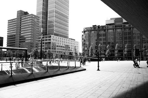Ingyenes stockfotó épületek, fák, központi állomás, Rotterdam témában
