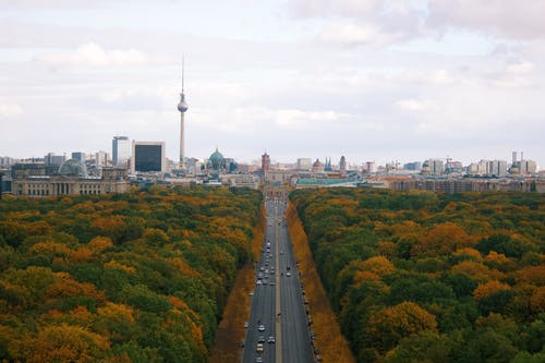High Angle View of Tiergarten in Berlin