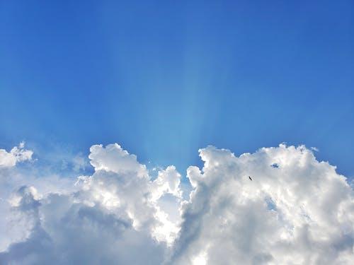 Бесплатное стоковое фото с атмосфера, ветер, высокий