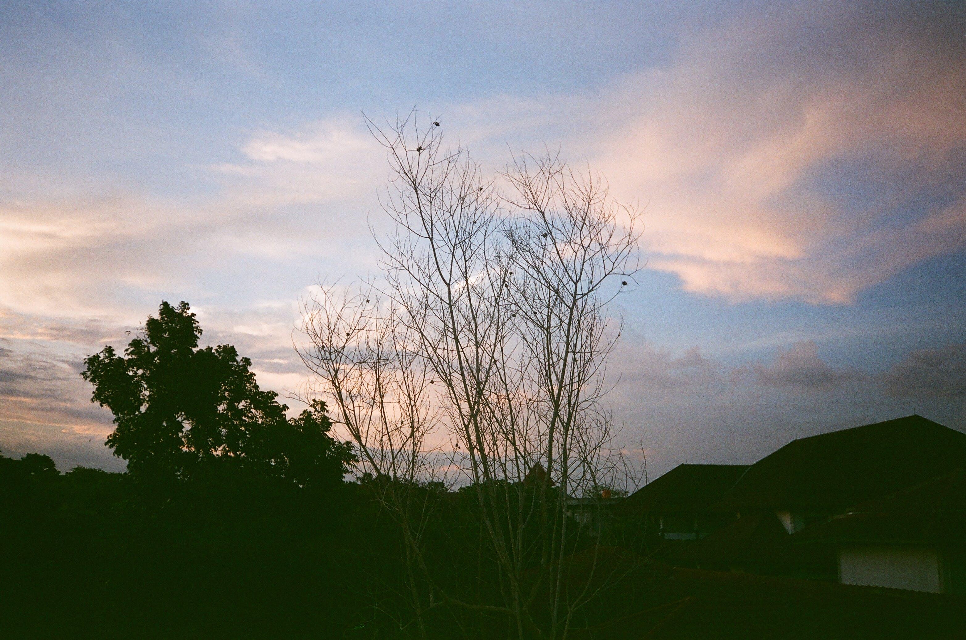Free stock photo of blue hour, blue sky, dusk, sky