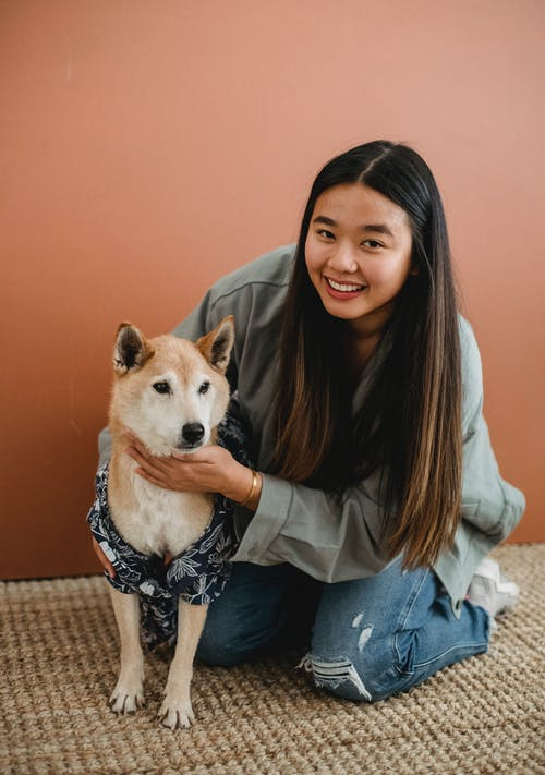 Full body of smiling ethnic female owner in casual clothes caressing loyal puppy in shirt while looking at camera