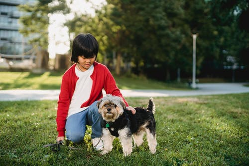 Little girl spending time with dog outside