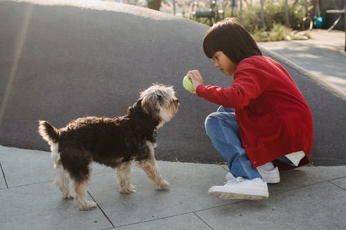 Side view of ethnic kid with small ball squatting on city street near small dog in back lit
