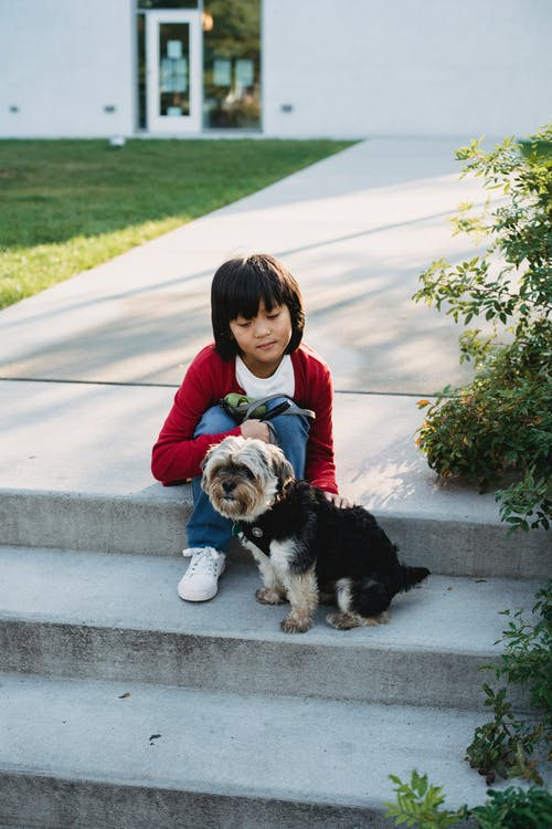 Asian boy stroking little dog on stairs in town