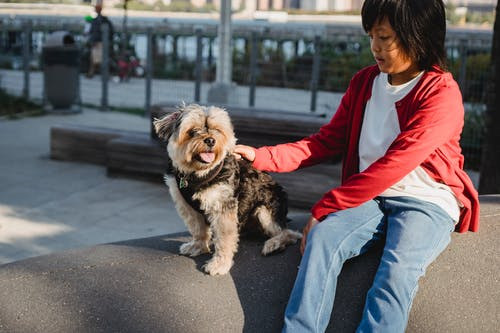 Crop ethnic child stroking small dog with tongue out while resting on cement platform in sunlight