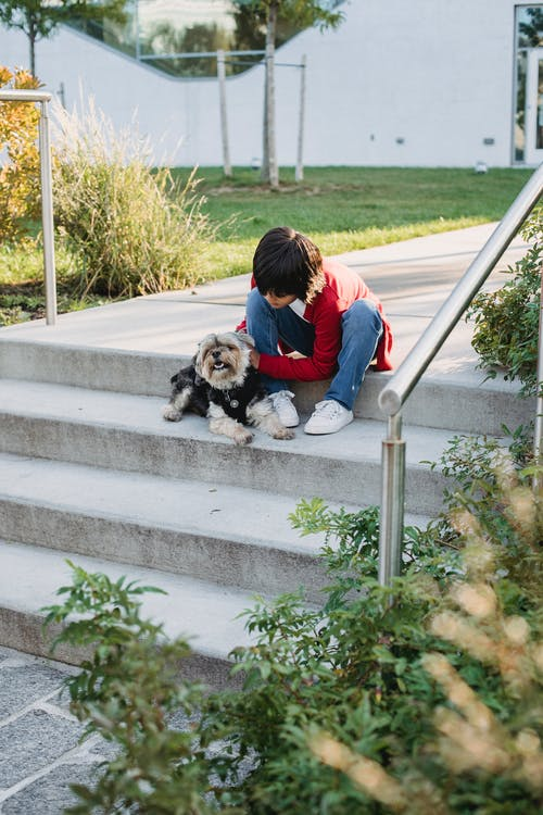 Child In Red Long Sleeve Shirt Sitting On A Stairs Showing Affection To The Dog