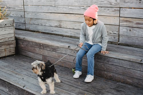 Asian boy with Yorkshire Terrier on leash resting on stairs