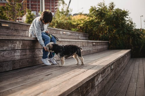 Unrecognizable ethnic child with Yorkshire Terrier on city stairs
