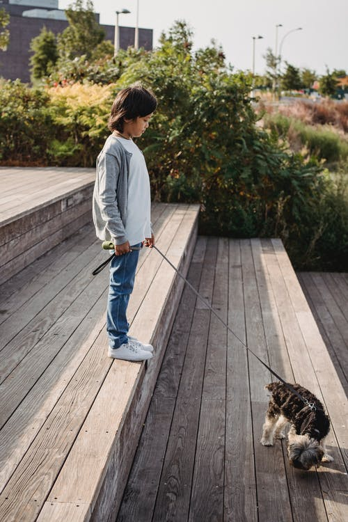 Side view of ethnic kid standing on urban staircase with Yorkshire Terrier on leash in sunlight