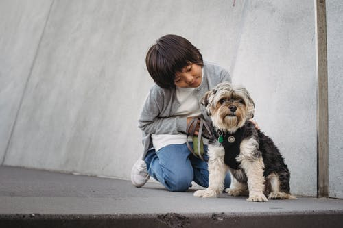 Cheerful ethnic child in casual clothes sitting on knees while stroking fluffy puppy on pavement
