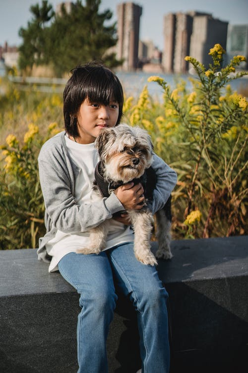 Attentive Asian kid in casual outfit resting on border while embracing cute puppy and looking away