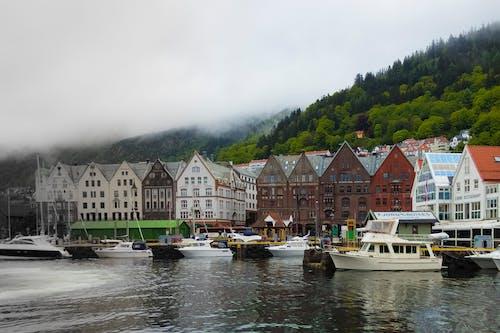 Gratis lagerfoto af båd, bergen, dejligt, dis