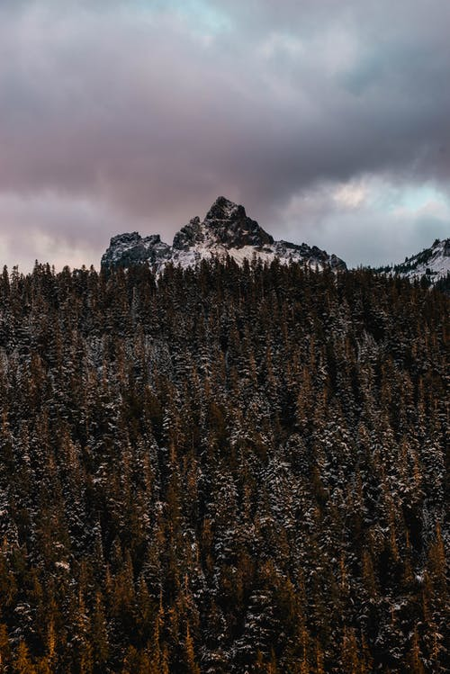 Rough mountain near lush trees under cloudy sky at sunset