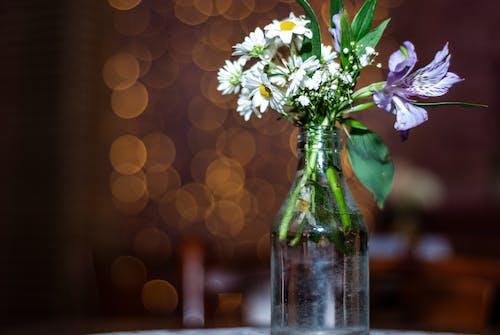 Vase with tender wild flowers in room