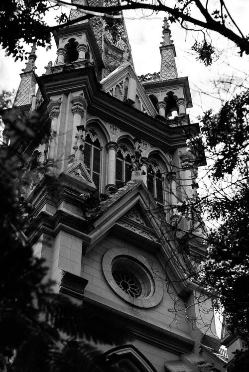 Low angle black and white of old stone cathedral with carved details and arched windows among plants