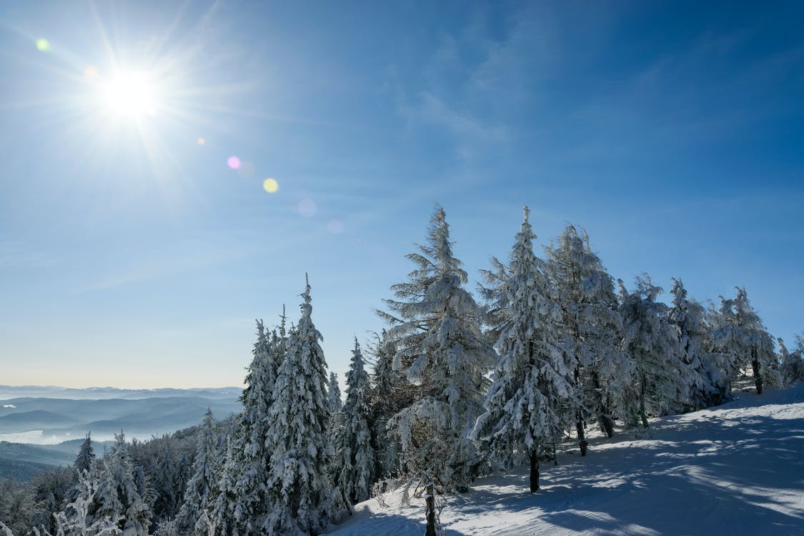Free stock photo of alpine, blue sky, carpathians