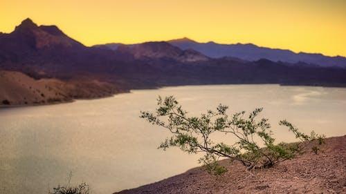Бесплатное стоковое фото с вечер, вода, гора