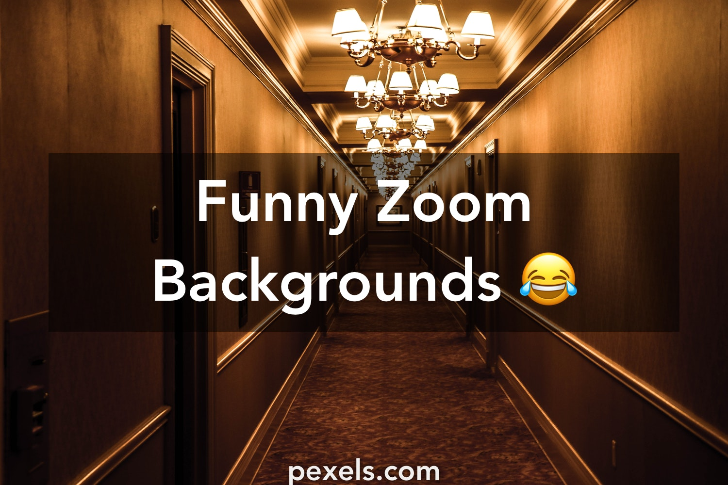 Funny Zoom Backgrounds Pexels