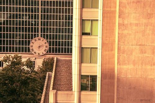 Photos gratuites de hôtel, hotel dupont, panorama urbain, restaurant