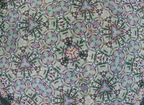 관념적인, 그래픽, 꽃의 무료 스톡 사진