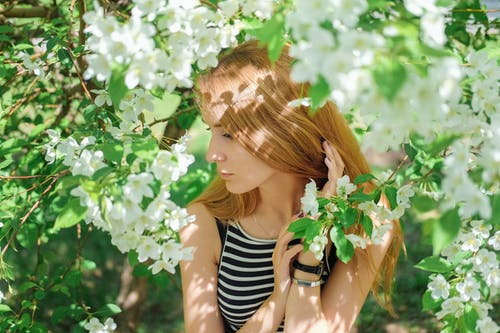 Attractive emotionless female in casual clothes touching hair tenderly and looking away while standing amidst fragrant blooming apple tree branches in spring garden