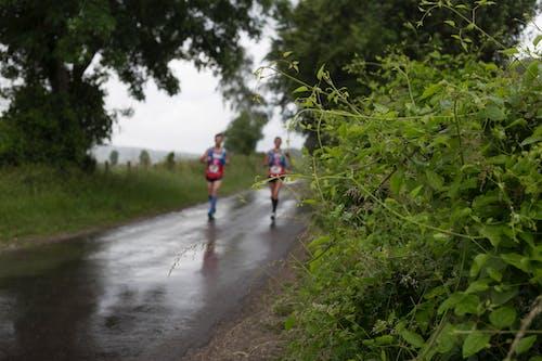 下雨, 两名选手, 乡村道路 的 免费素材图片