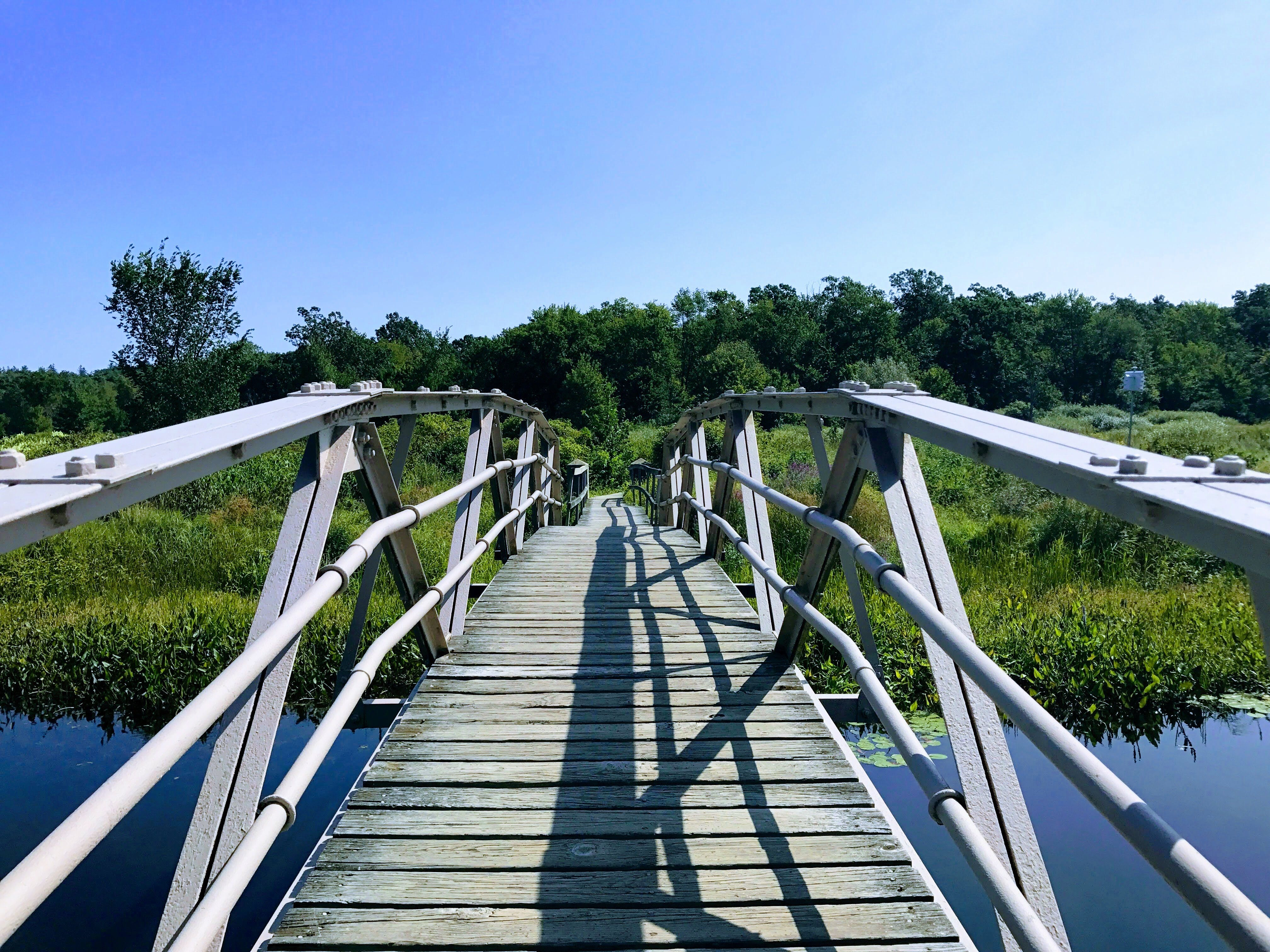 architecture, boardwalk, bridge