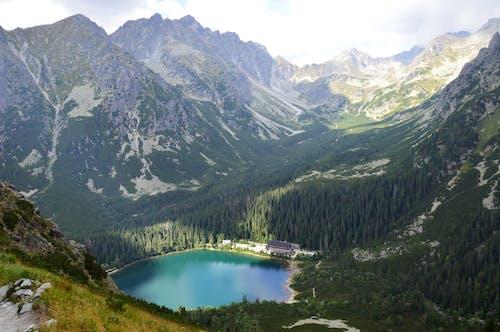 Imagine de stoc gratuită din alpin, apă, ape calme, arbori