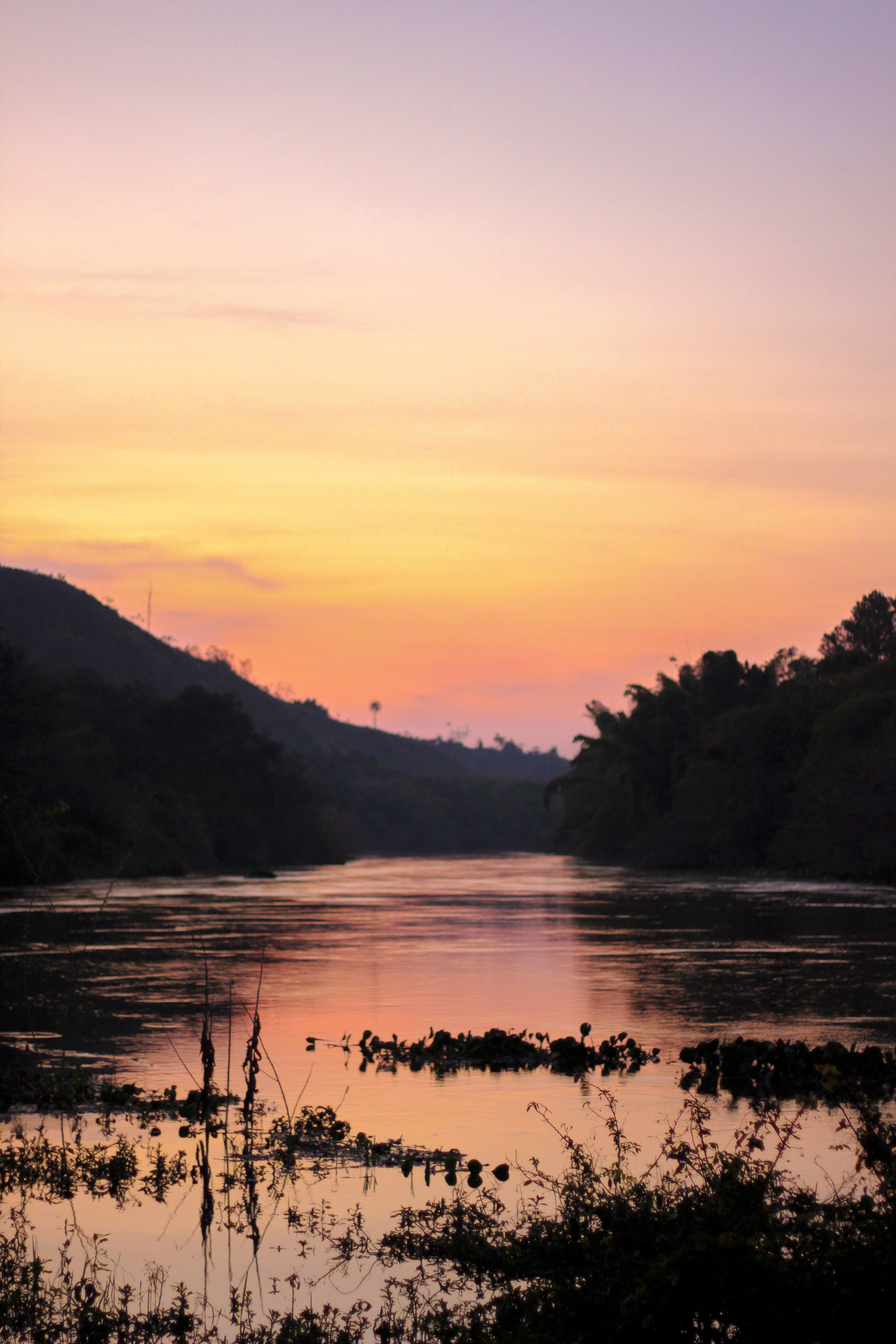 Free stock photo of sunset, sun, river, golden sun