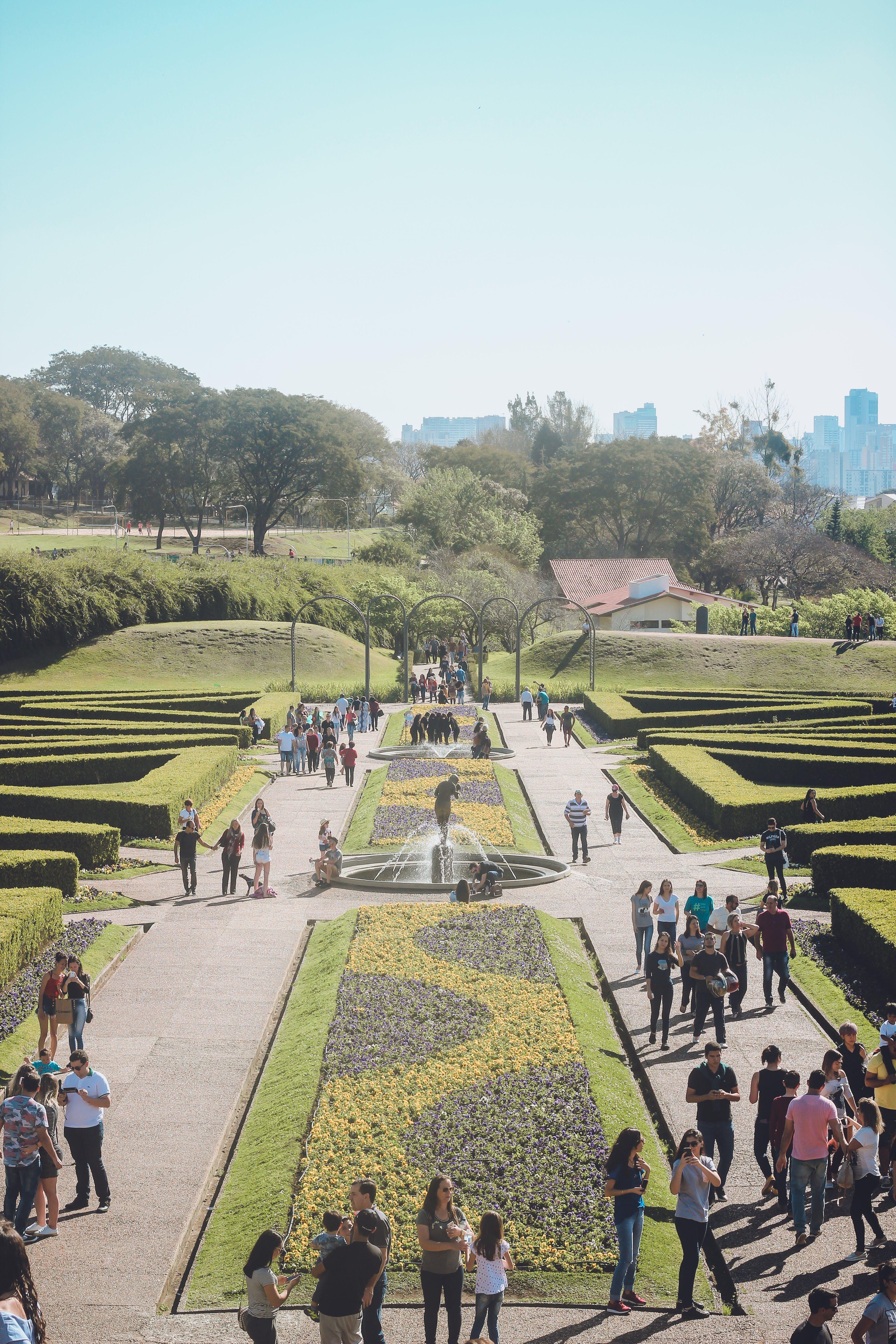 Free stock photo of garden, jardim, flower garden, turism