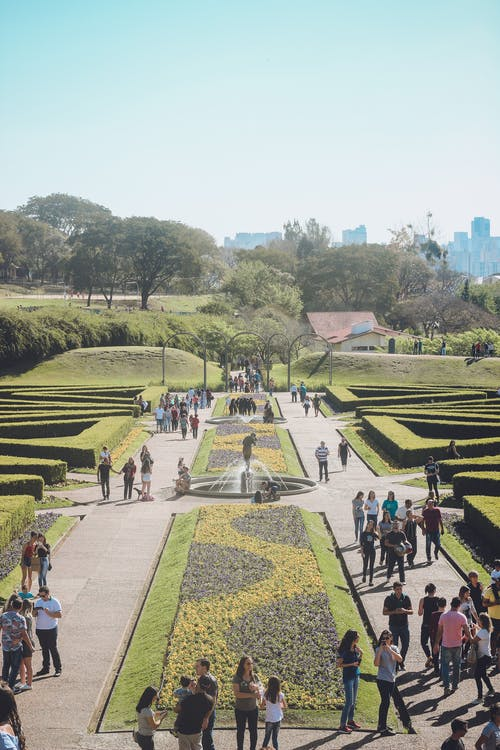 Photos gratuites de botanique, curitiba, jardim, jardim botanico
