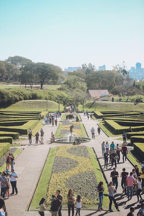 Curitiba, jardim, jardim botanico