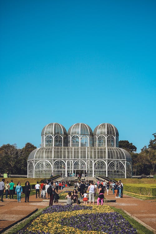 Fotobanka sbezplatnými fotkami na tému architektonický dizajn, architektúra, botanický, budova
