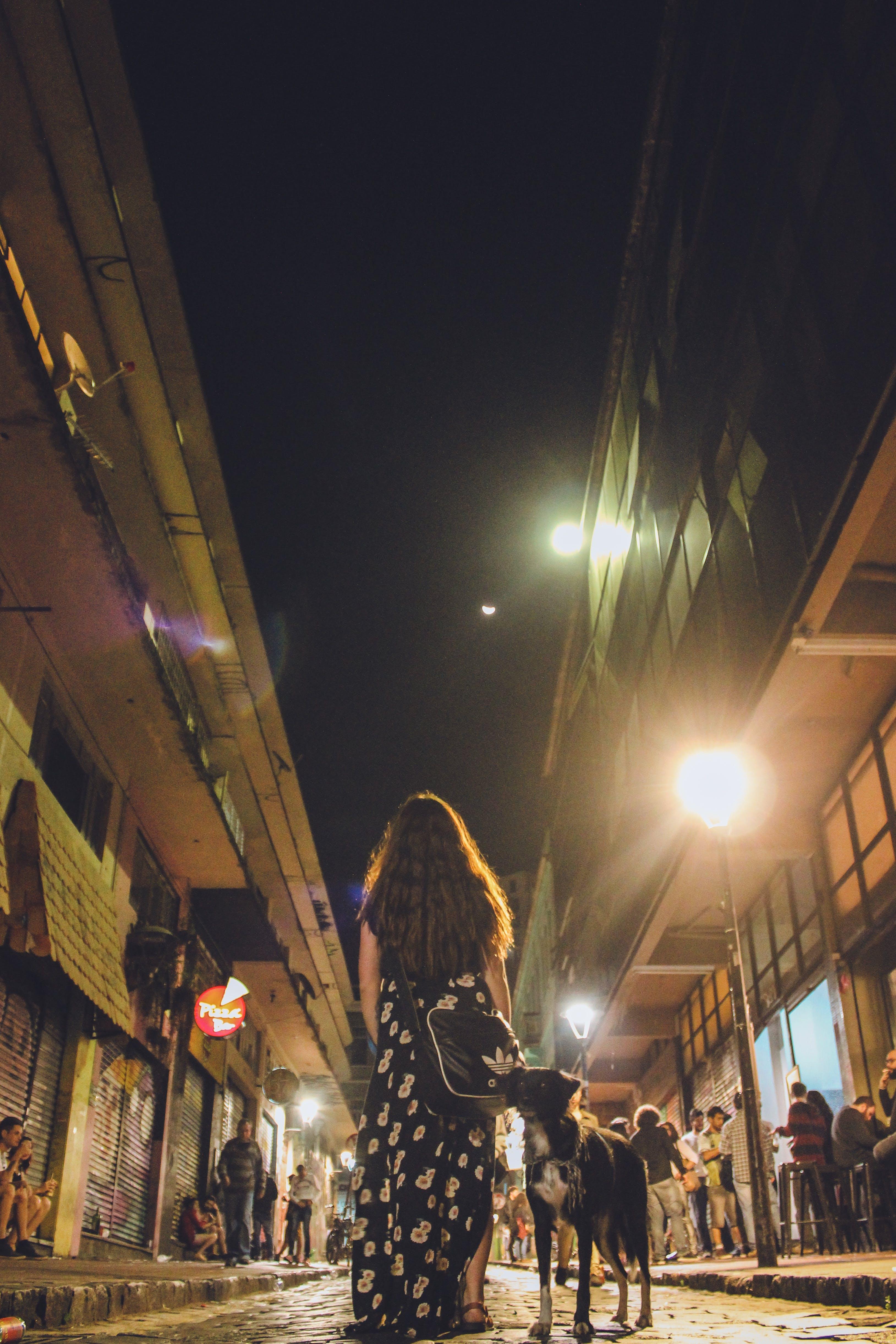 Free stock photo of street, walking, girl, dog