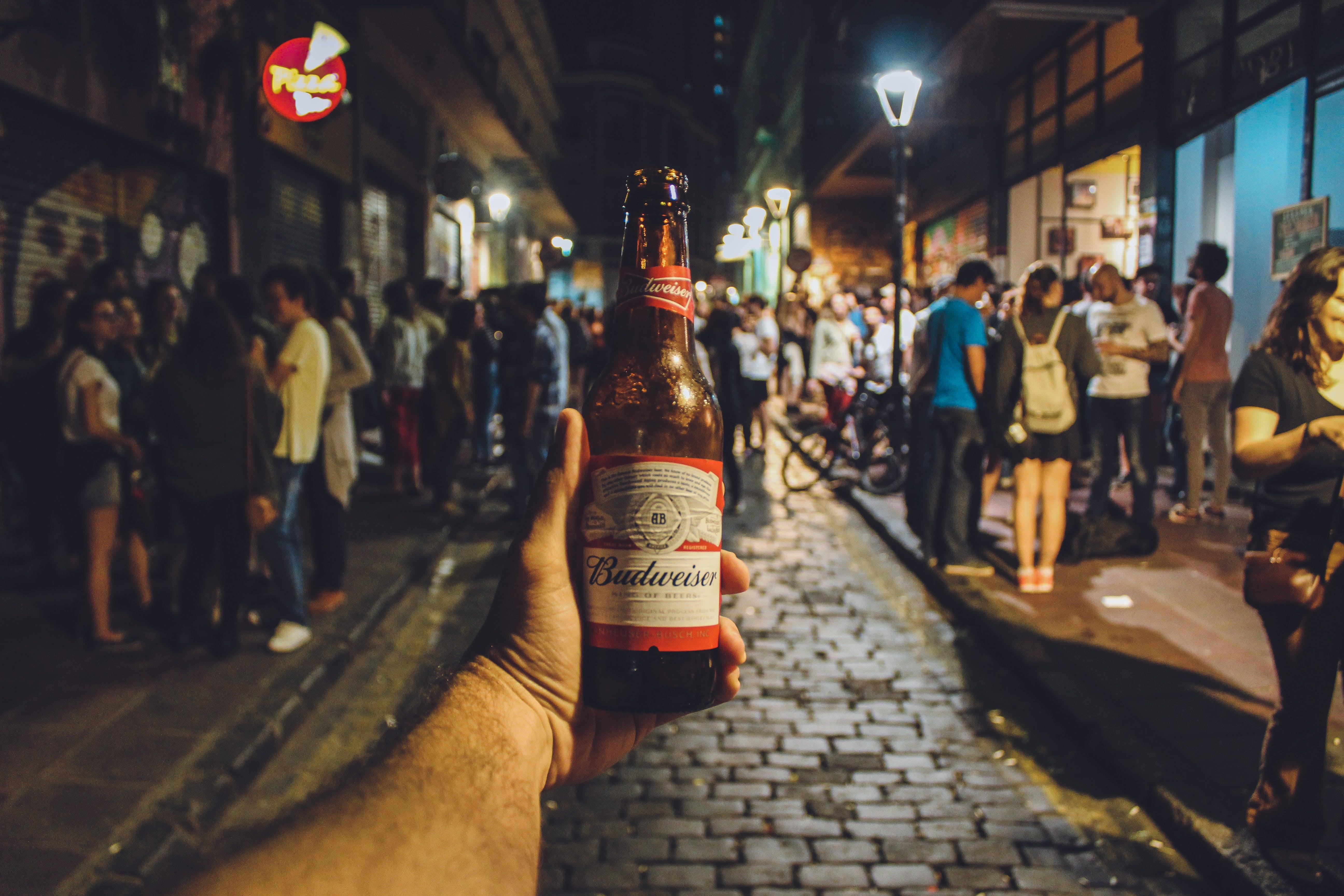 Person Holding Budweiser Bottle