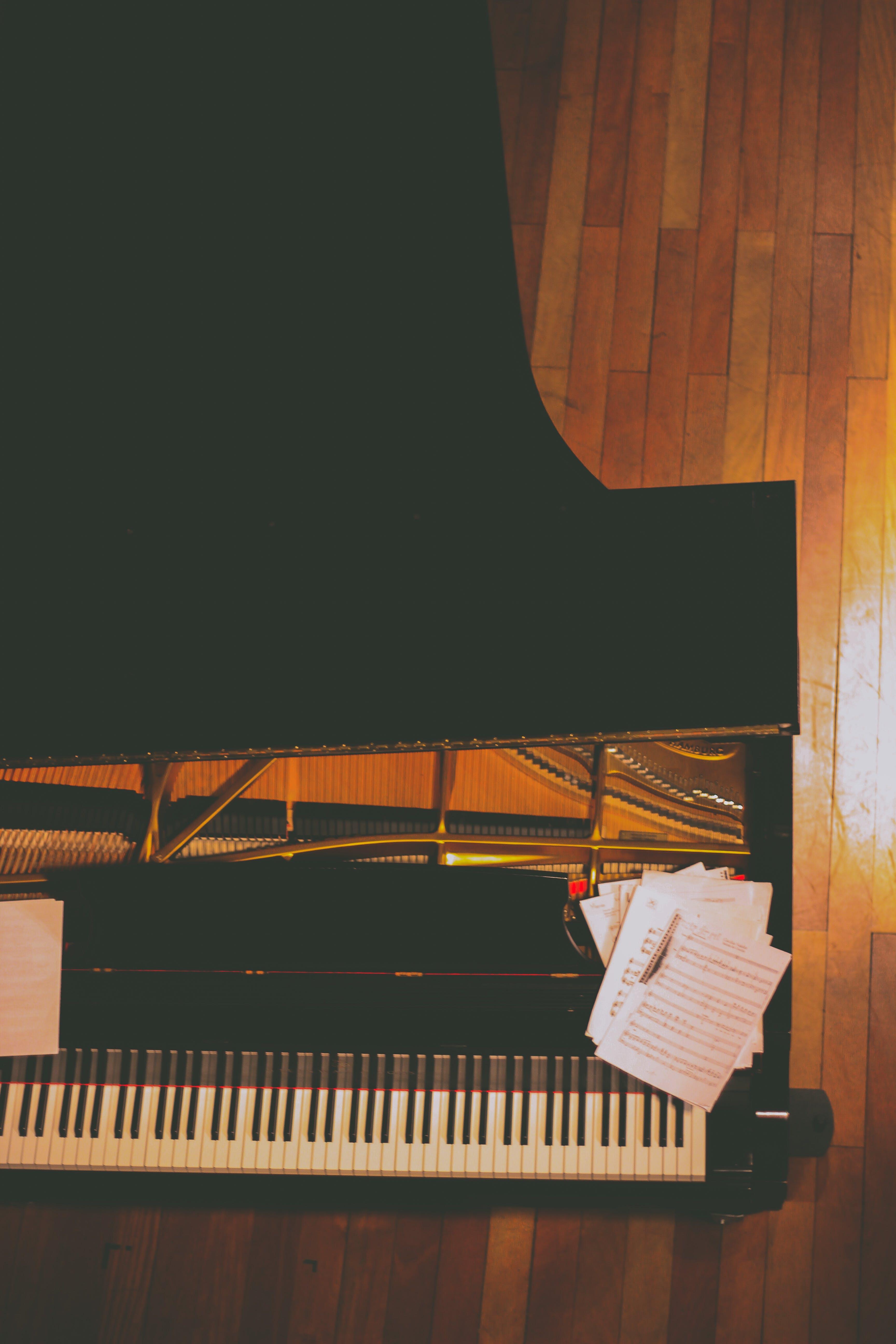 Free stock photo of amazing, music, opera, piano