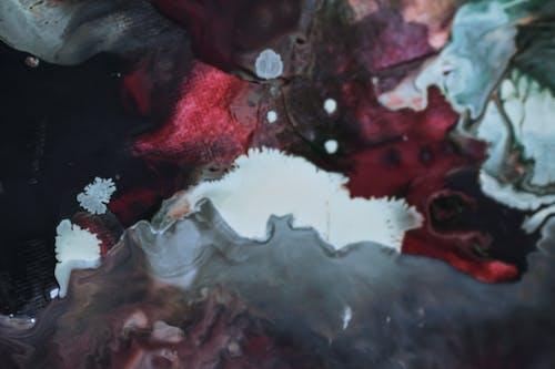アート, アクア, アクリルの無料の写真素材