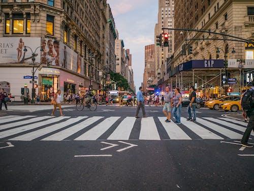 가벼운, 거리, 건너는, 건물의 무료 스톡 사진