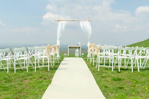 Gratis lagerfoto af bryllup, gardin, græs, himmel