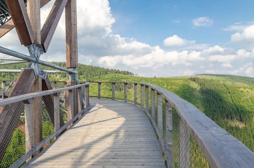 Brown Wooden Bridge Under Blue Sky