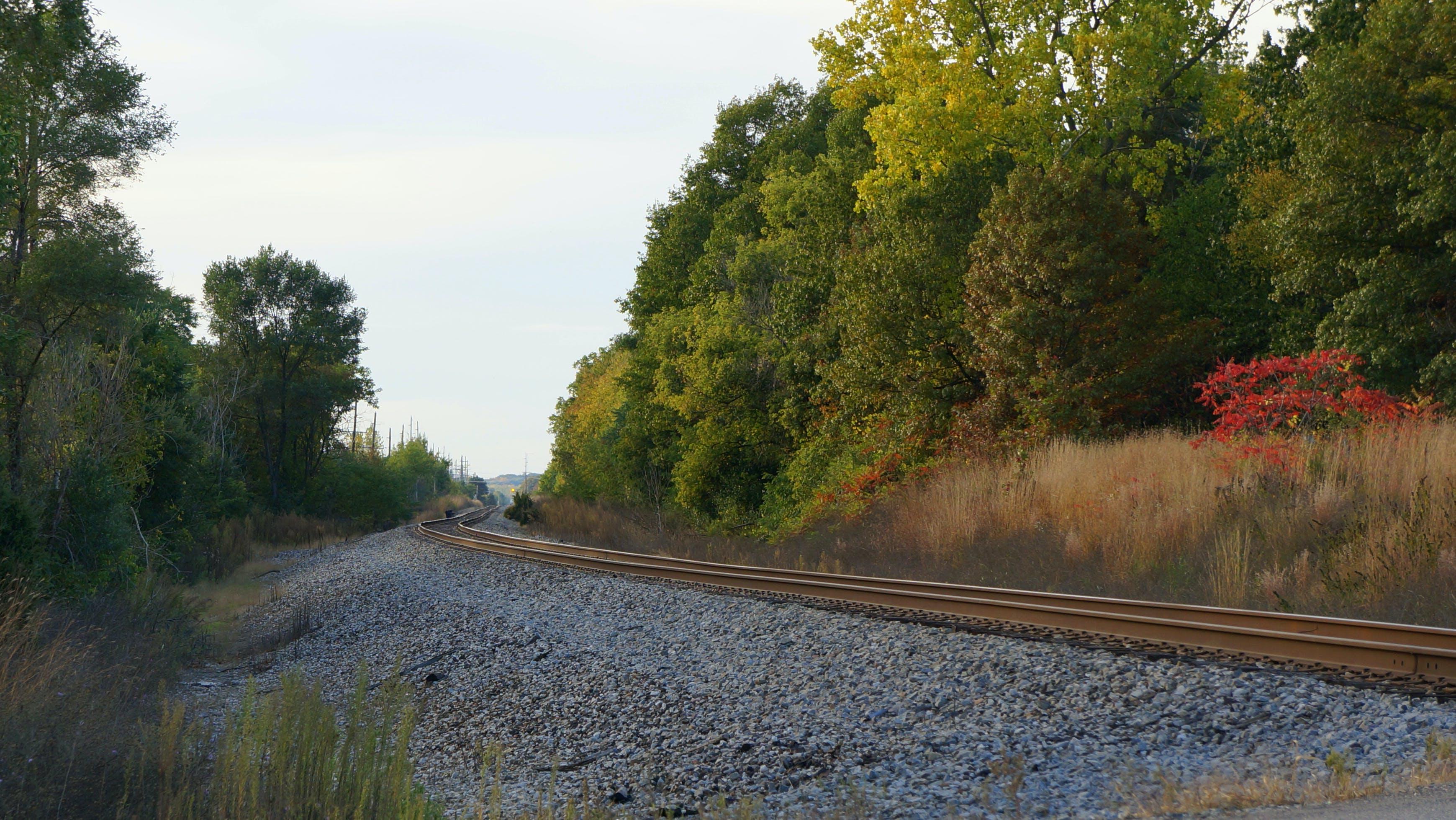 Free stock photo of fall, michigan, railroad, railroad track