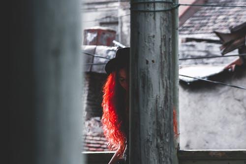 Ilmainen kuvapankkikuva tunnisteilla henkilö, hiukset, hius, ihminen