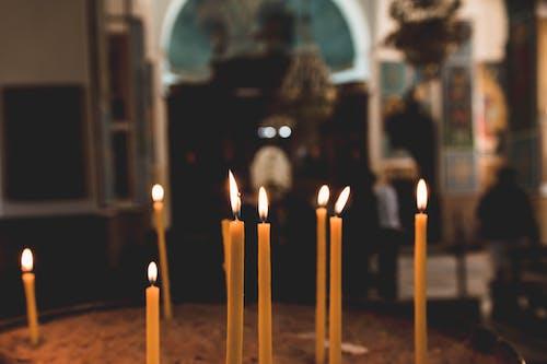 Безкоштовне стокове фото на тему «вогонь, легкий, свічка, слідуйте»