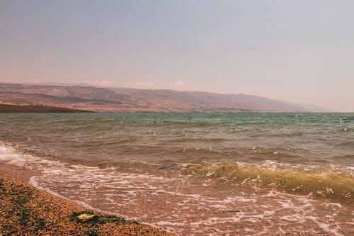 Безкоштовне стокове фото на тему «jordan, вода, мертве море, море»