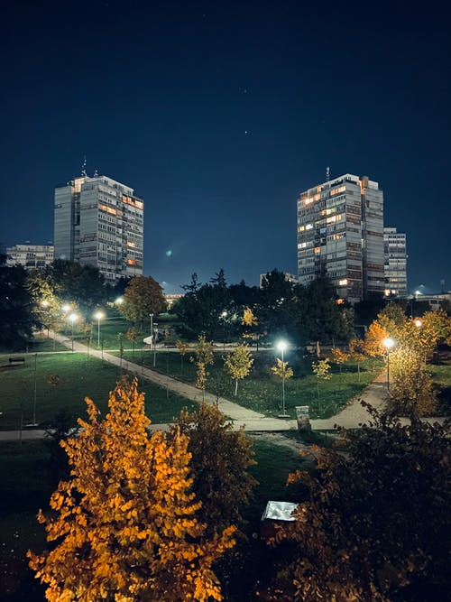 Free stock photo of a park, at night, citylights
