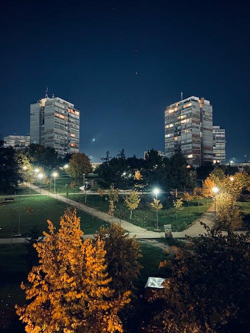 Fotos de stock gratuitas de Luces de la ciudad, por la noche, un parque